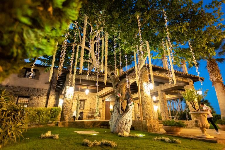 luci albero matrimonio